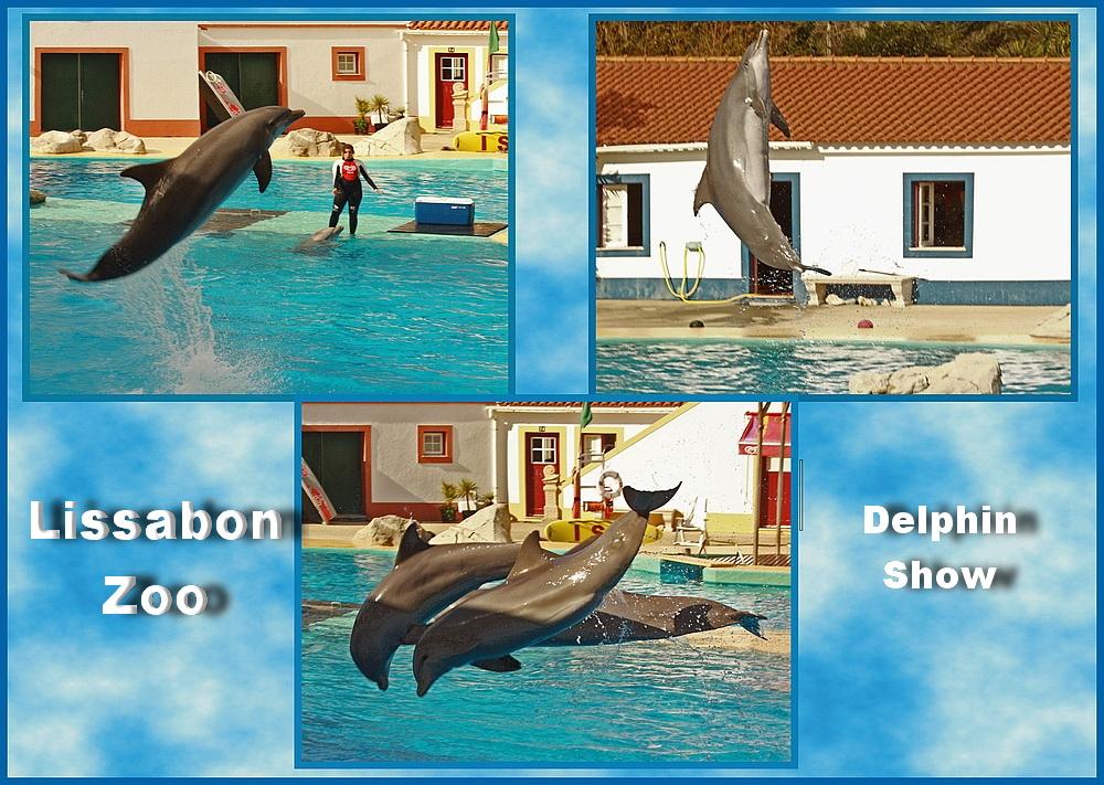 Klar waren wir auch im Lissaboner Zoo!