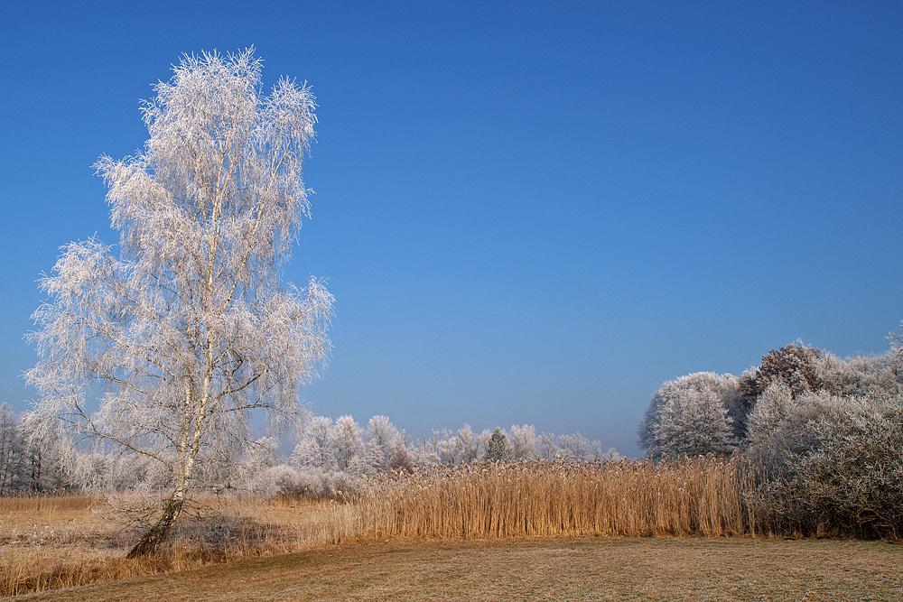 klare Kälte