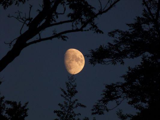 Klare Nacht
