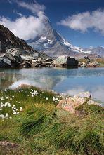 Klassiker: Matterhorn im Riffelsee