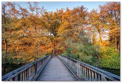 Klaubuschbrücke