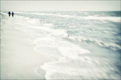 Klaviatur des Meeres