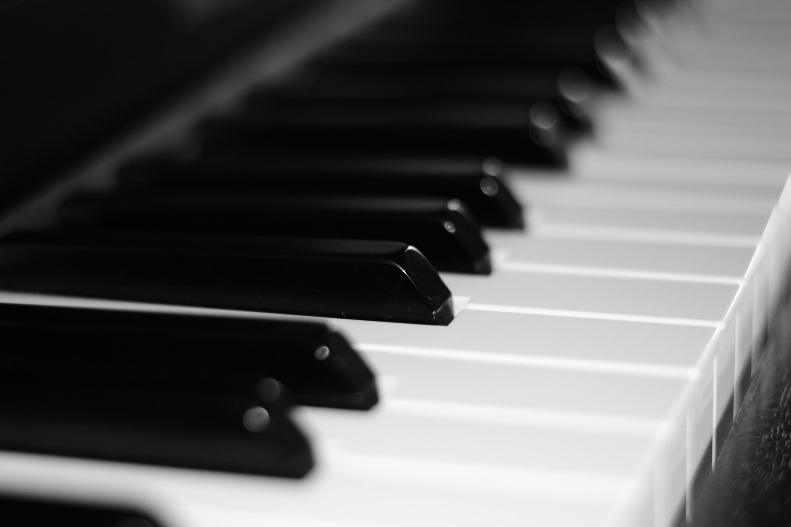 klavier foto bild kunstfotografie kultur musik konzert musikinstrumente bilder auf. Black Bedroom Furniture Sets. Home Design Ideas