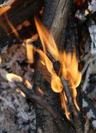 kleine flammen