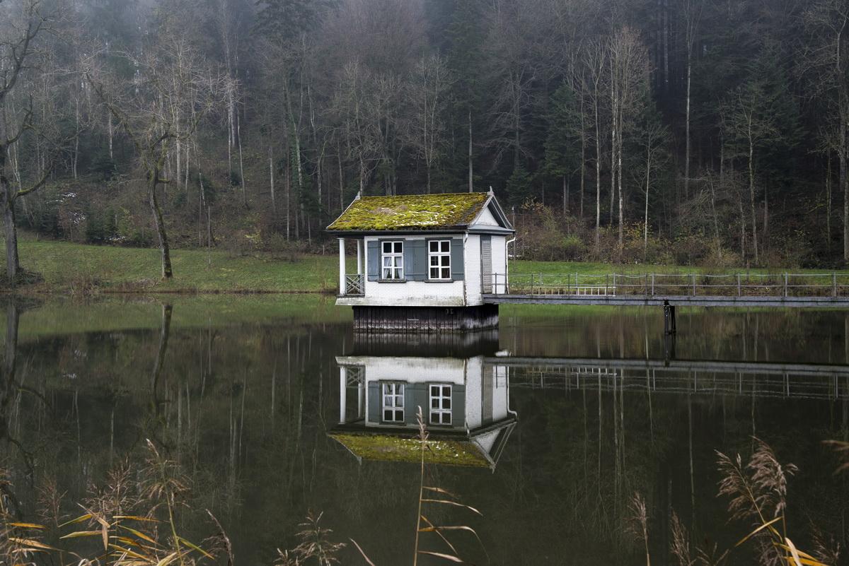 kleine h tte im weiher foto bild landschaft bach fluss see see teich t mpel bilder. Black Bedroom Furniture Sets. Home Design Ideas
