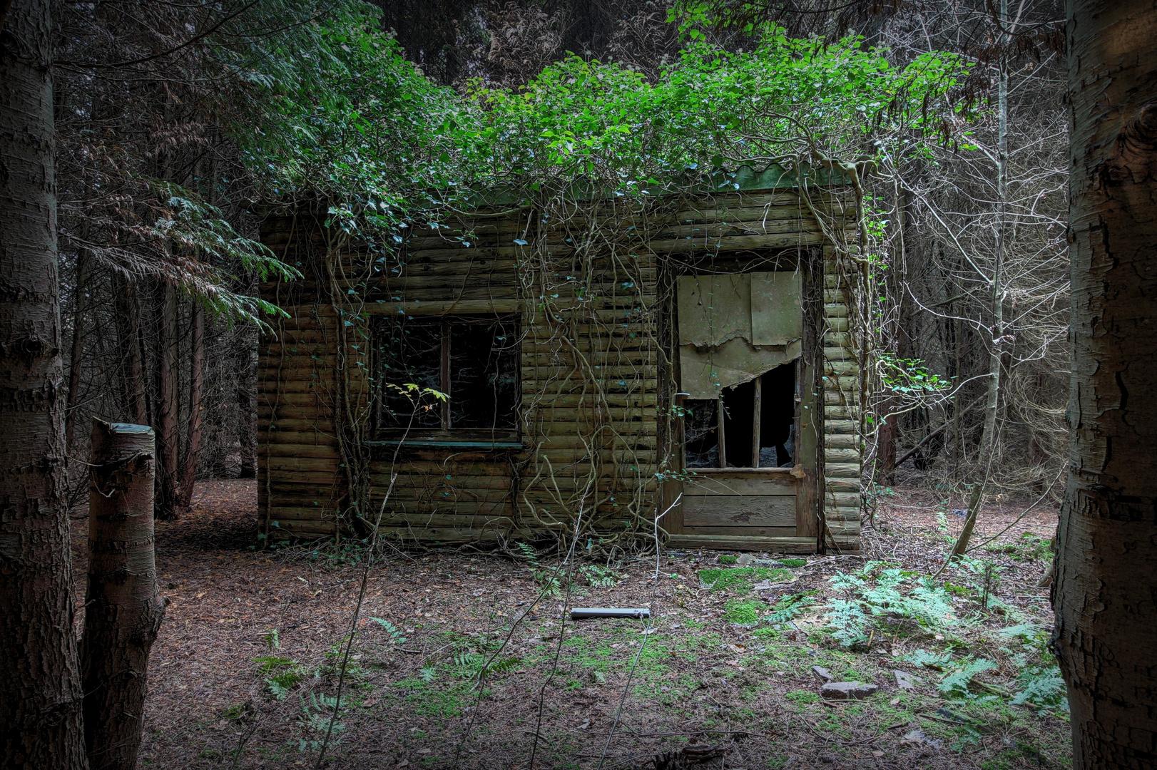 kleine h tte versteckt im wald foto bild lostplaces urbanexploration motive bilder auf. Black Bedroom Furniture Sets. Home Design Ideas