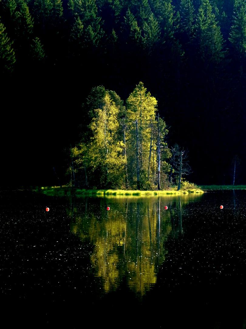 kleine Insel im Licht