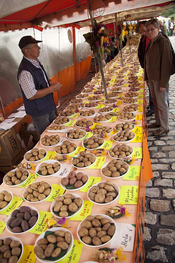 Kleine Kartoffel-Kunde (2v.2)