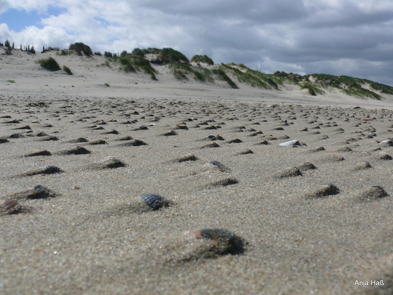Kleine Sandgestalten
