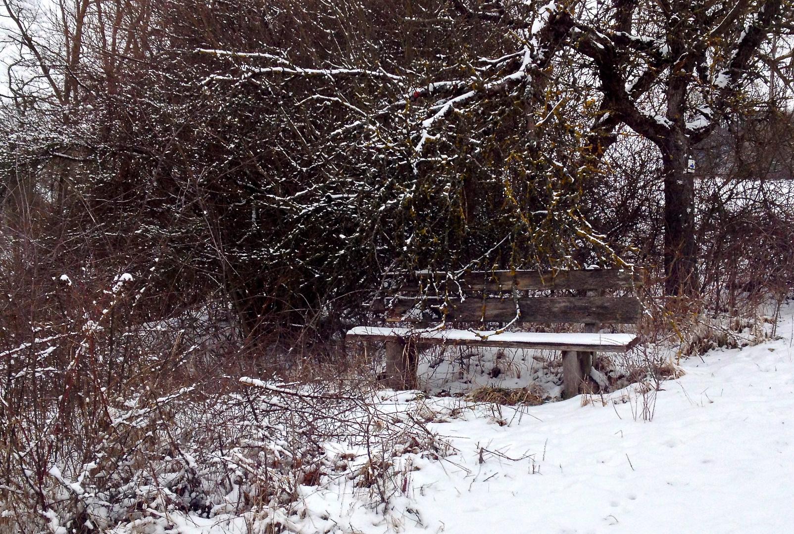Kleine Schneeidylle