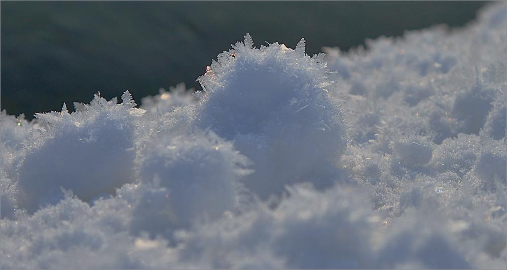 Kleine Schneemonster