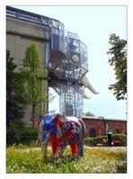 Kleine und große Elefanten ...