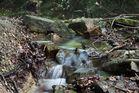 Kleiner aber feiner Wasserfall