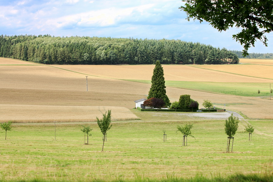 Kleiner Friedhof bei Oberfischbach 7