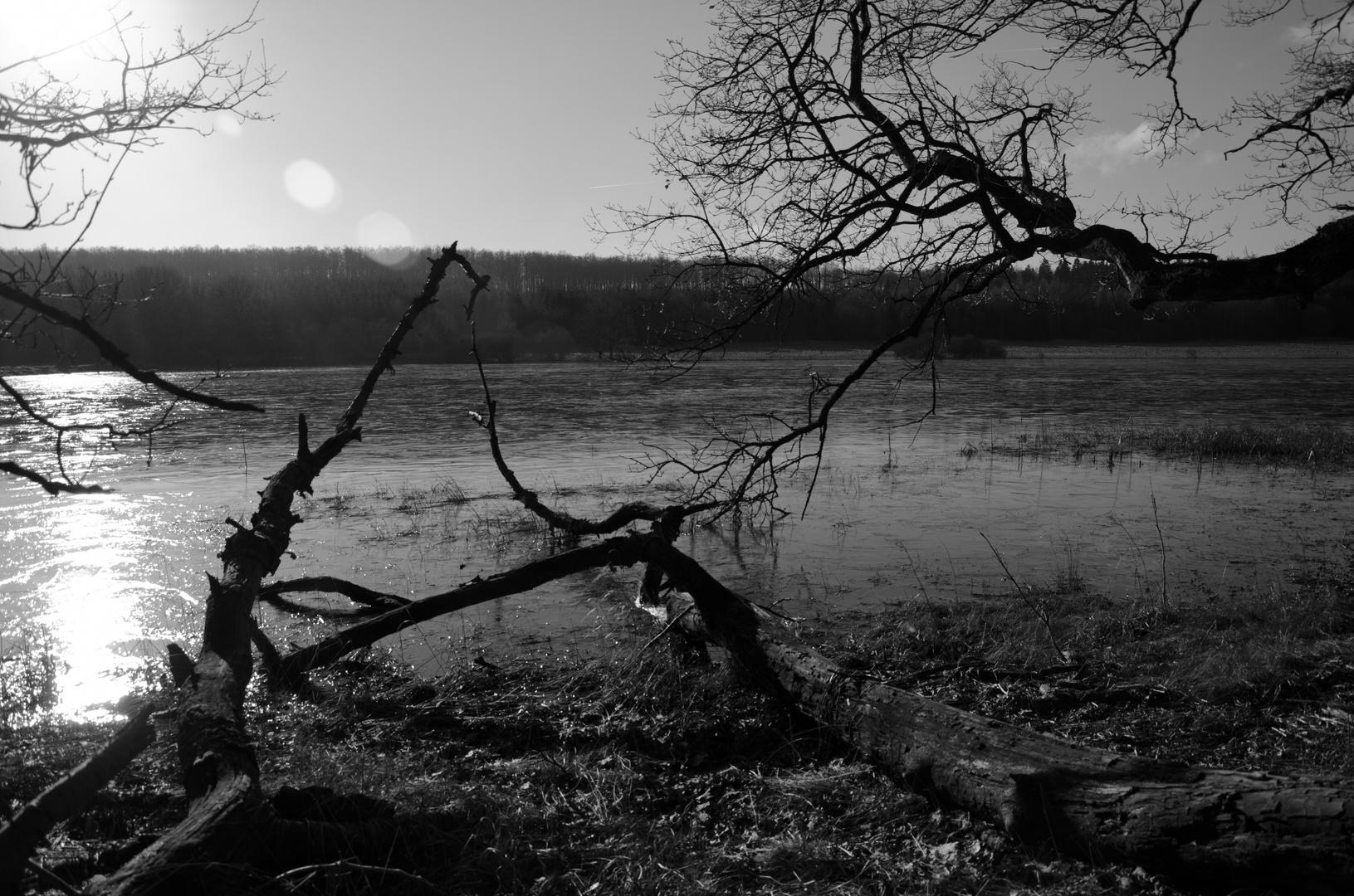 Kleiner See am morgen