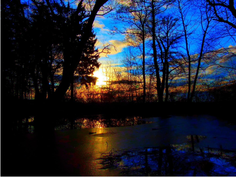 Kleiner Teich am Abend