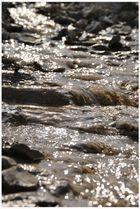 Kleiner Wasserlauf