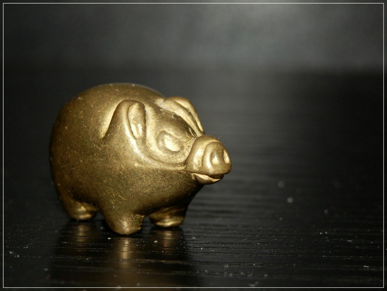 kleines Glücksschweinchen