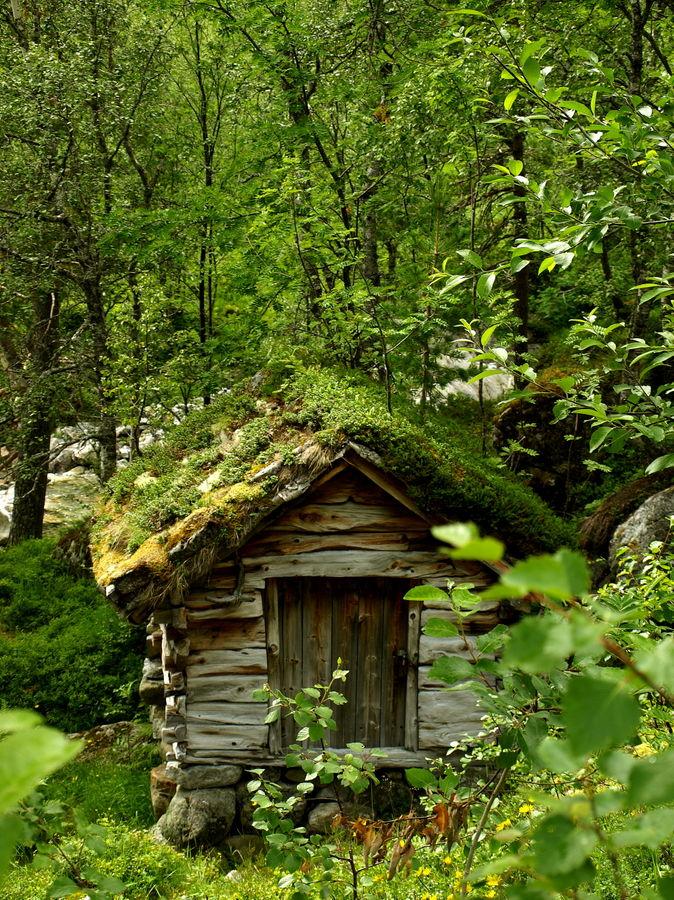 kleines haus im wald foto bild landschaft r ckkehr der natur natur bilder auf fotocommunity. Black Bedroom Furniture Sets. Home Design Ideas