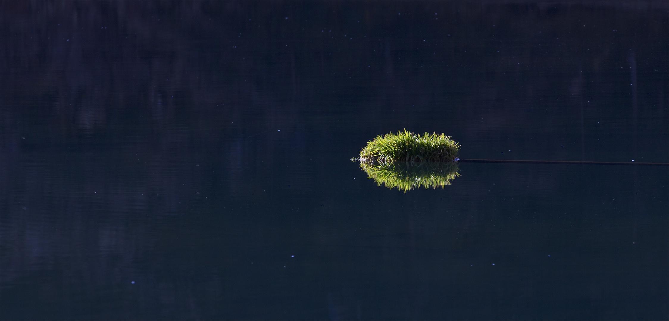 kleines Inseli im Golzernsee 2