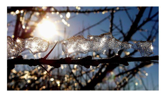 Kleines Kunstwerk aus Eis