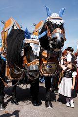 Kleines Mädchen - Großes Pferd