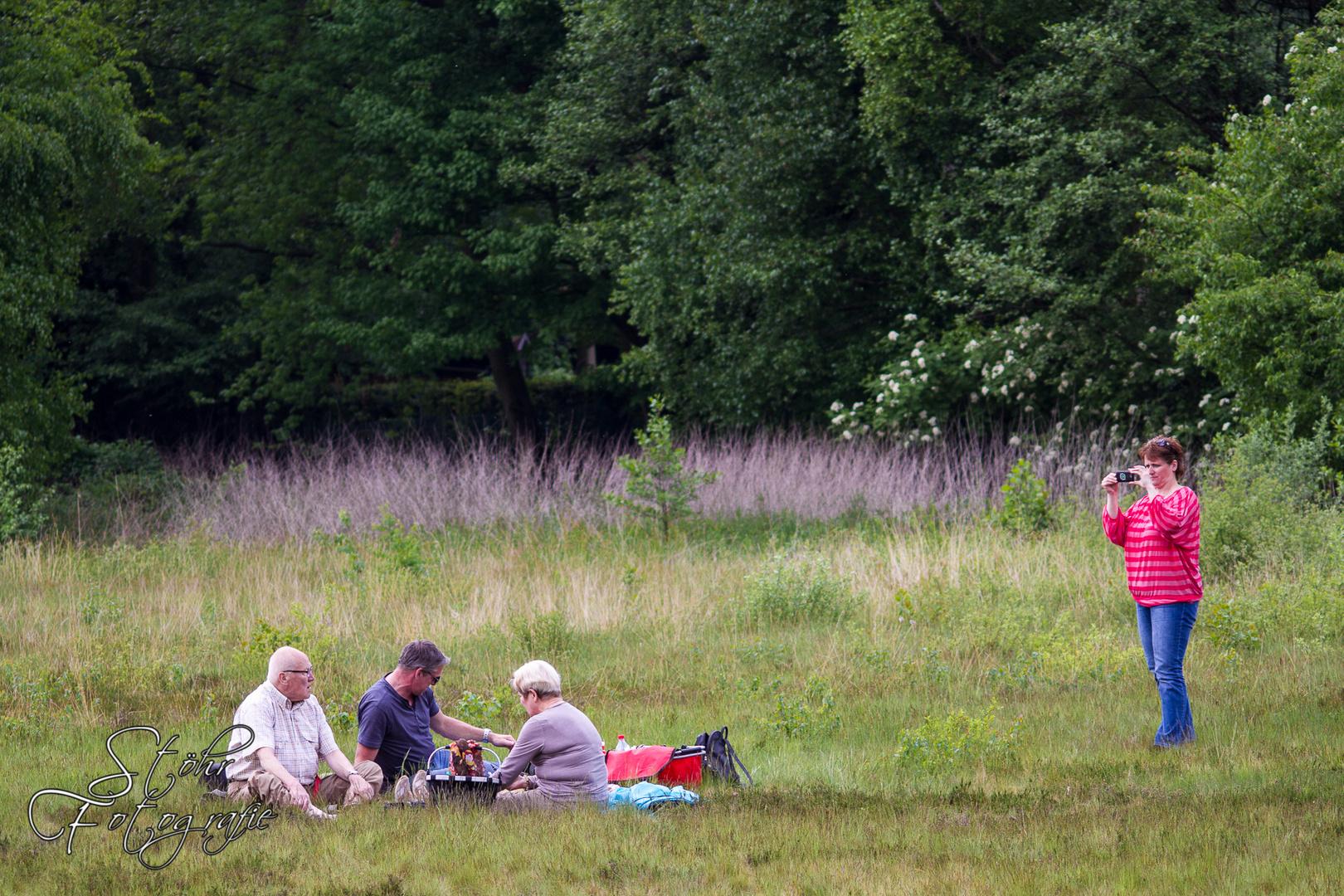 kleines Piknik im Grünen?