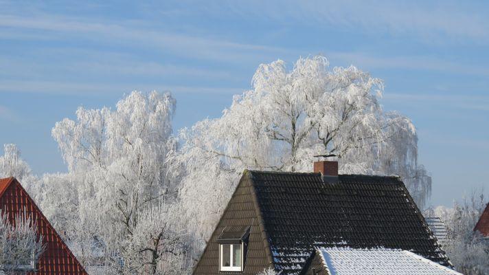 Kleingartengebiet im Winter 2016