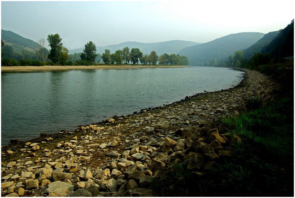 Kleinwasser am herbstlichen Rhein (2)