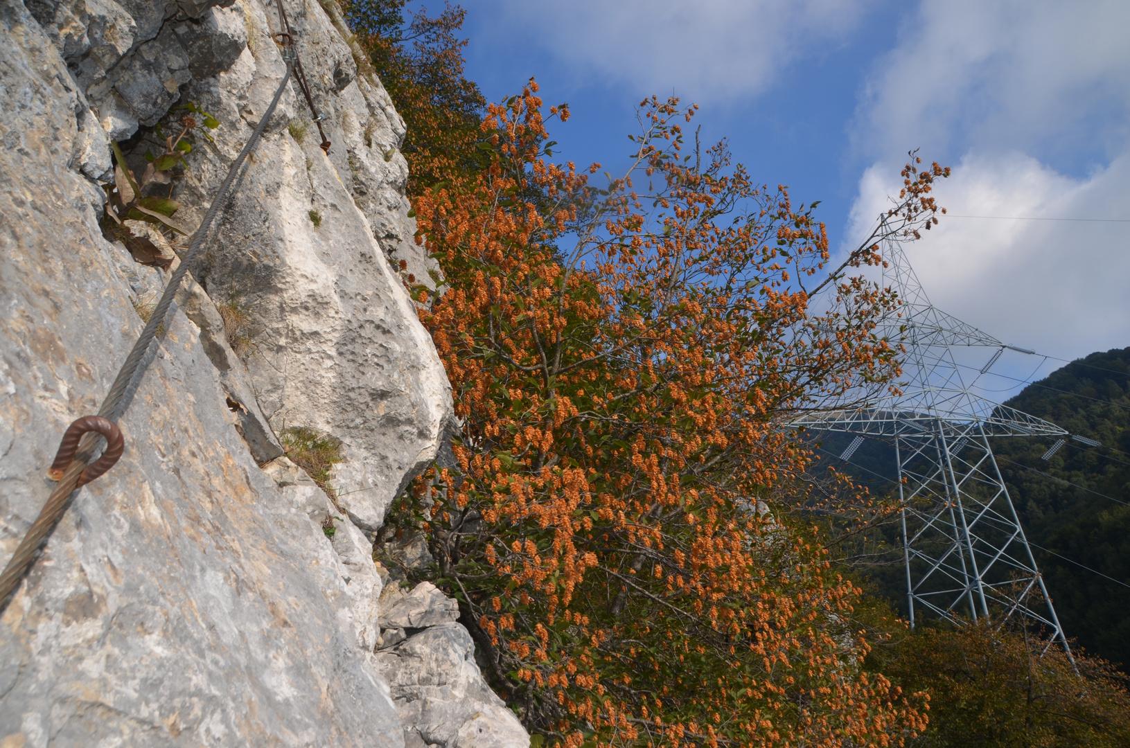 Klettern gibt Energie :)