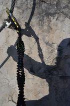 Klettern - meine Liebe