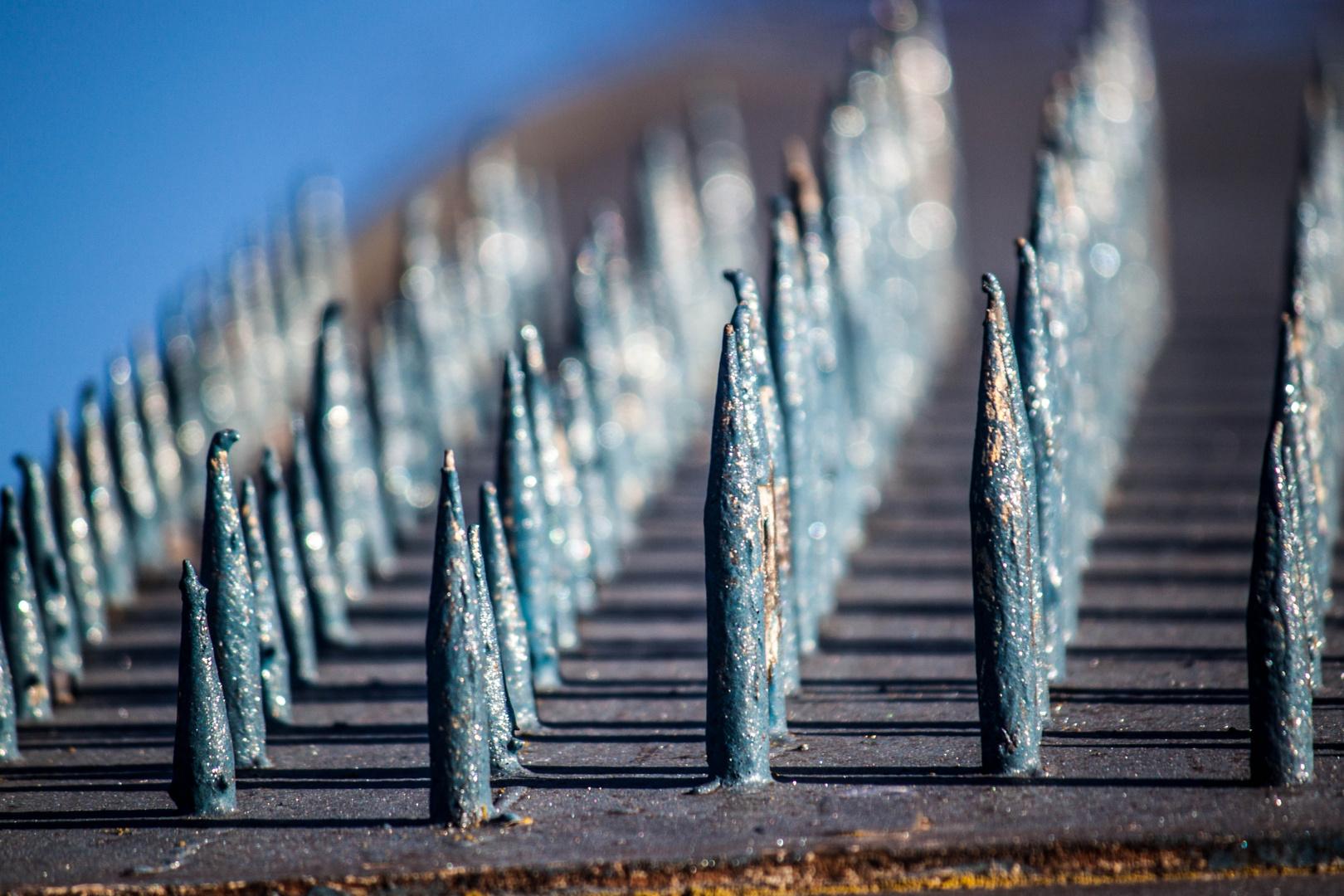 Kletterschutz Foto & Bild | architektur, straßen & brücken