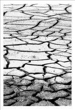 Klimawandel in Beckum