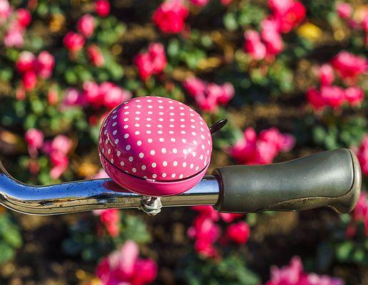 KlingelBlume oder BlumenKlingel?
