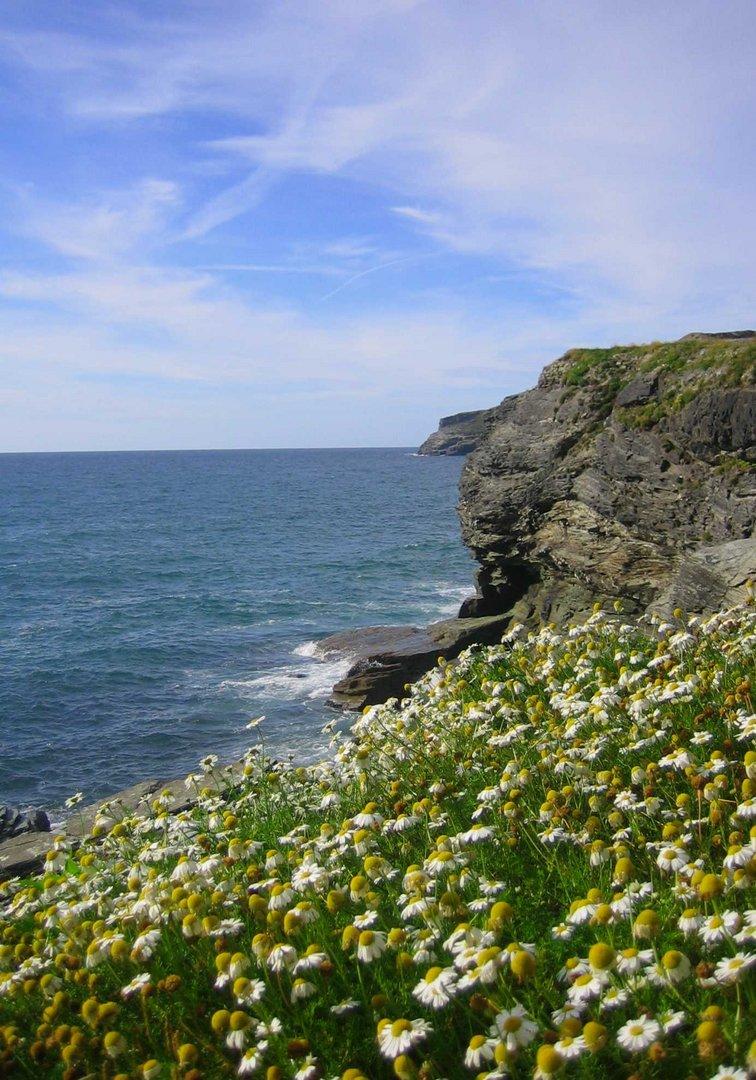 Klippen in Cornwall