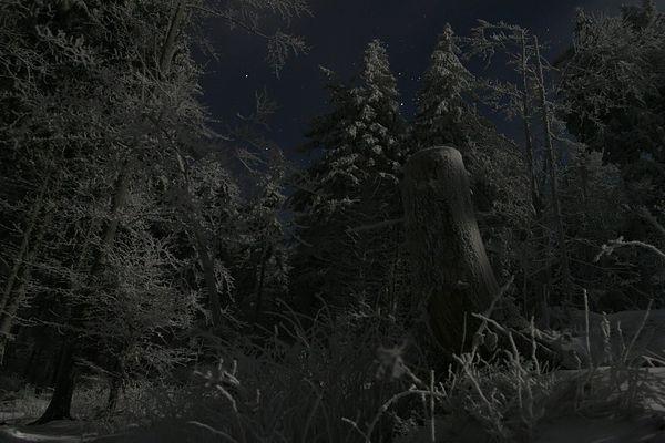 Klirrend kalte Winternacht