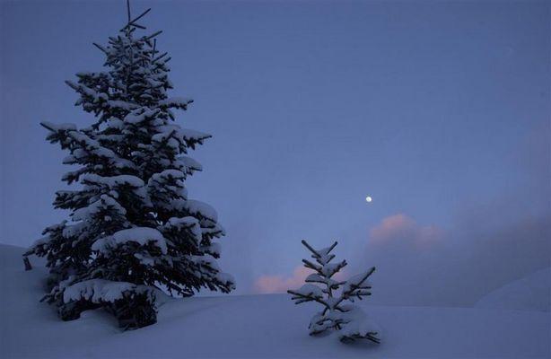 Klirrende Kälte mit Mond