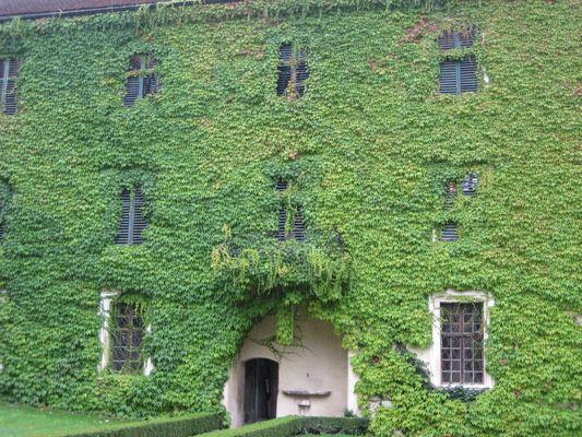 Kloster.......................