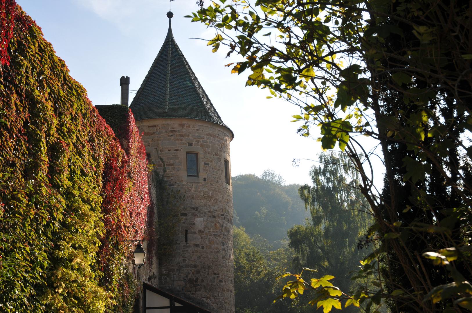 Kloster Bebenhausen bei Tübingen 1/5