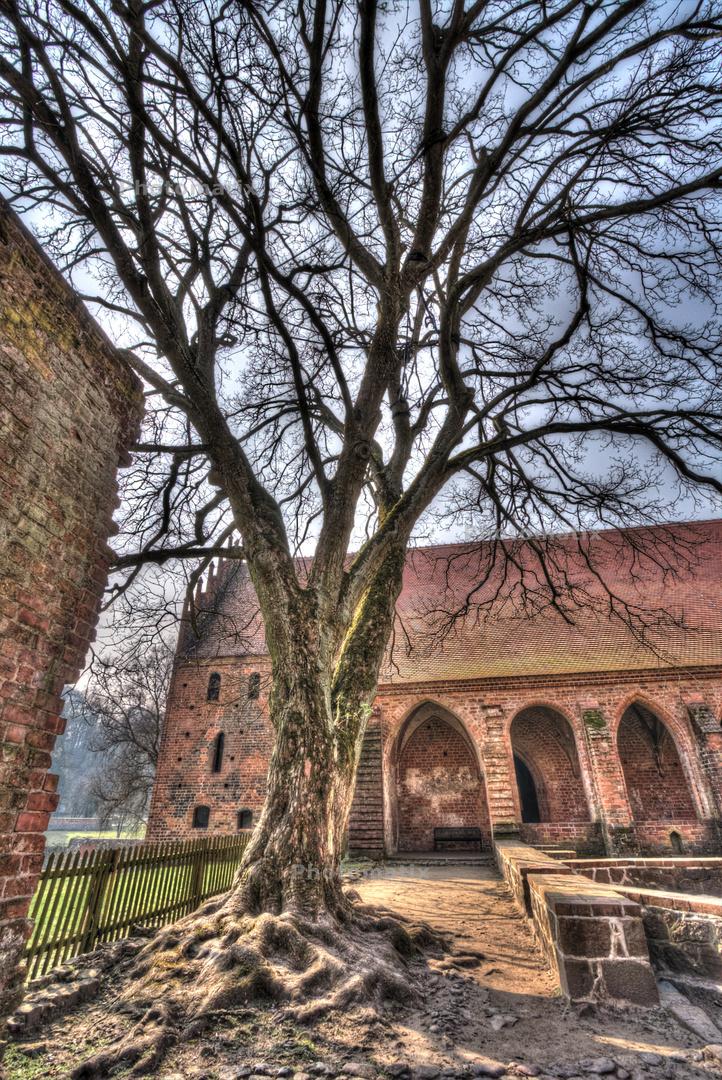 Kloster Chorin 5