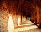 Kloster Chorin (II)