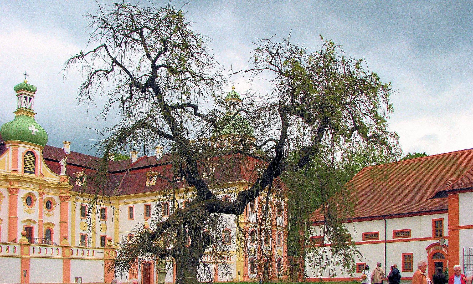 Kloster Mariental 4