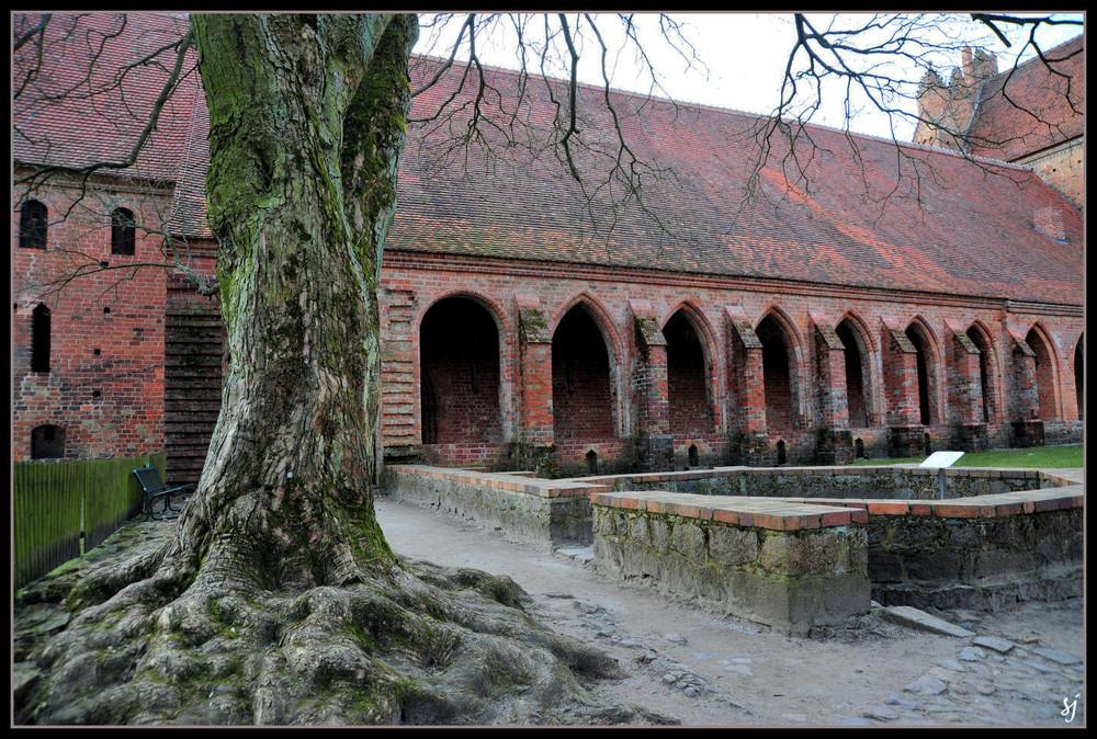 Klostermauern (10)