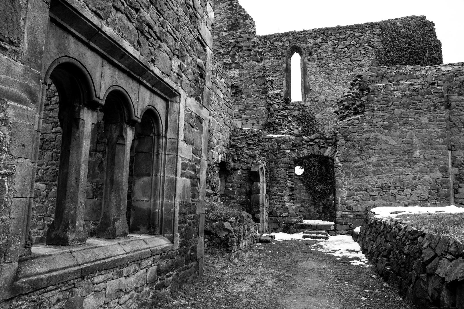Klosterruine Heilig Kreuz, Meißen