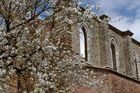 Klosterruine in San Galgano