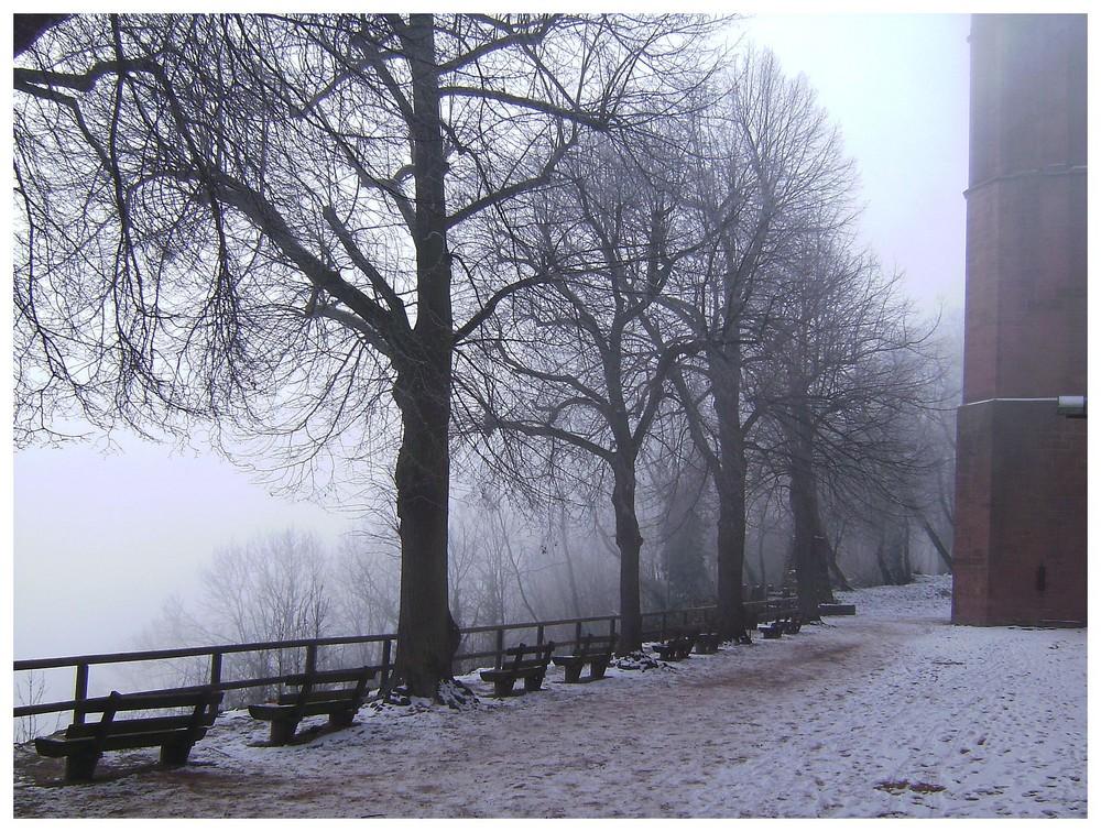 Klosterruine Limburg: Winternebel 2
