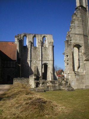 Klosterruine Walkenried (3)