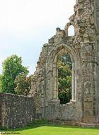Klosterruine Walkenried l