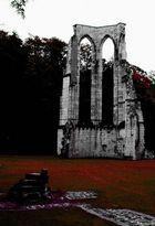 Klosterrunie Walkenried 2