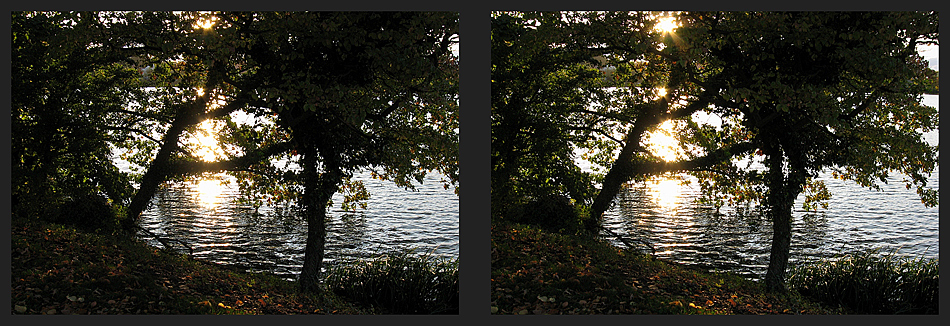 Knieper Teich in Stralsund